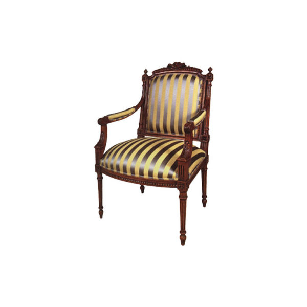 Luxury French Armchair with Upholstery Stripe Fabric