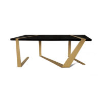 Anais Wooden Coffee Table with Gold Stainless Steel Legs Back