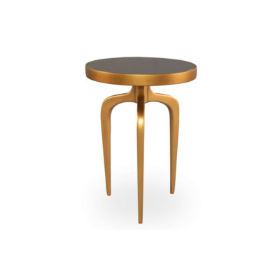 Sasha Wooden Gold with Glass Top Side Table