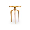 Sasha Wooden Gold with Glass Top Side Table 6