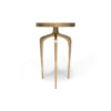 Sasha Wooden Gold with Glass Top Side Table 5