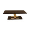 Azaro Brown and Gold Coffee Table 1