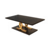 Azaro Brown and Gold Coffee Table 3