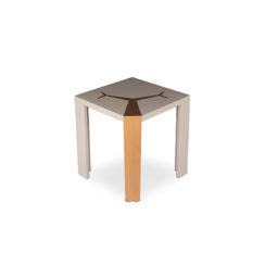 Tree Square Grey Side Table With Golden Stainless Leg