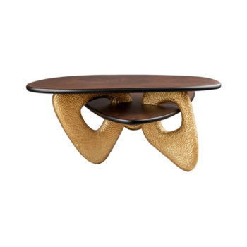 Aziza Gold and Dark Brown Modern Wooden Coffee Table Beside View