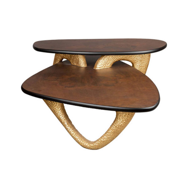 Aziza Gold and Dark Brown Modern Wooden Coffee Table Corner View
