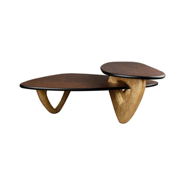 Aziza Gold and Dark Brown Modern Wooden Coffee Table Front View