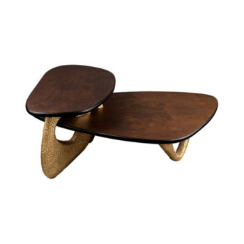 Aziza Gold and Dark Brown Modern Wooden Coffee Table Top View