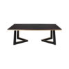 Rion Dark Brown Wood and Brass Coffee Table 1