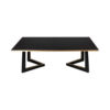 Rion Dark Brown Wood and Brass Coffee Table 4