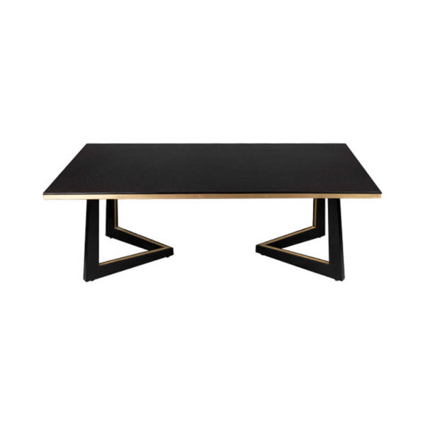Rion Dark Brown Wood and Brass Coffee Table Front