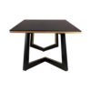 Rion Dark Brown Wood and Brass Coffee Table 5