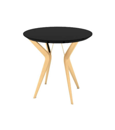 Wellington Black Side Table with Golden Legs
