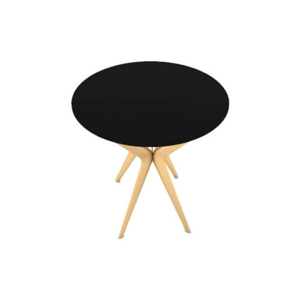 Wellington Black Side Table with Golden Legs Top