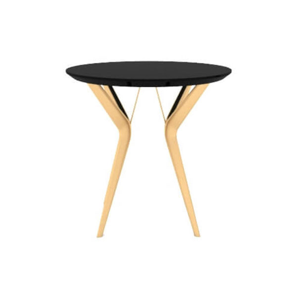Wellington Black Side Table with Golden Legs View